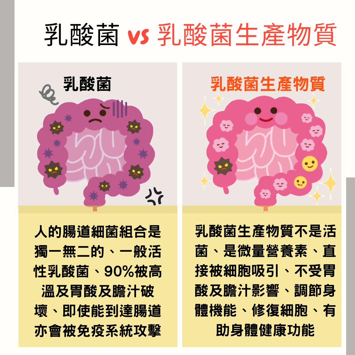 乳酸菌 vs 乳酸菌生產物質