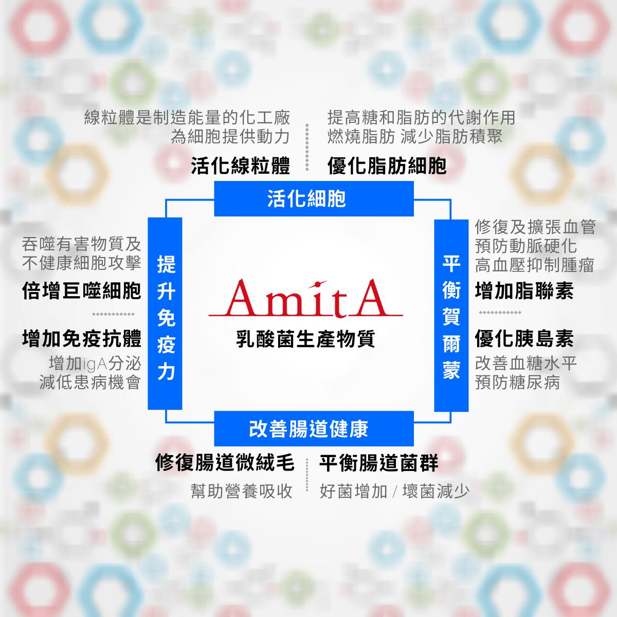 AmitA乳酸菌生產物質功效