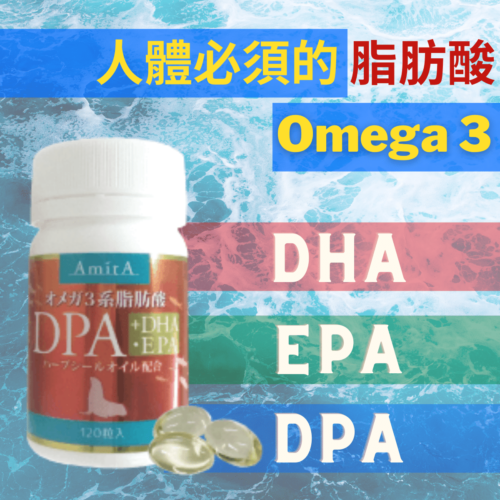 人體必須的Omega 3脂肪酸 dha epa dpa